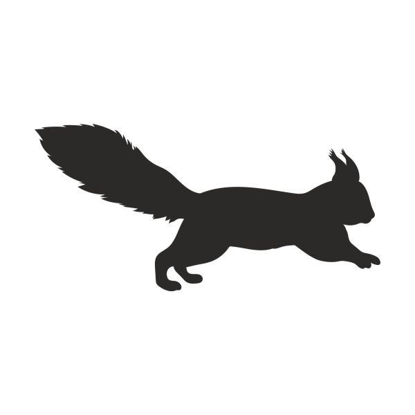 Eekhoorn muursticker